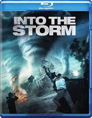 Cover image for Into the storm