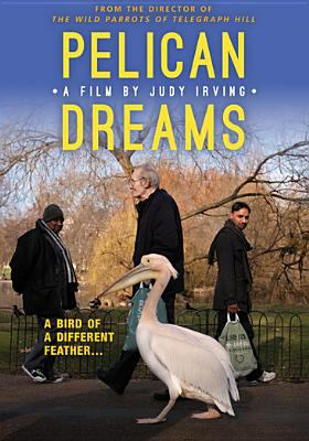 Cover image for Pelican dreams