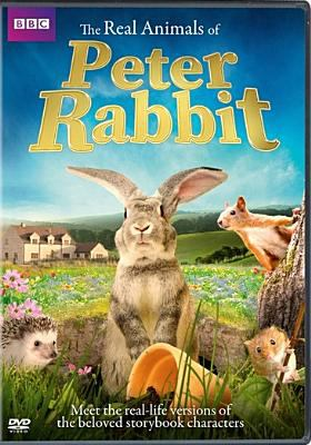 Cover image for The real animals of Peter Rabbit.