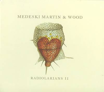 Cover image for Radiolarians II