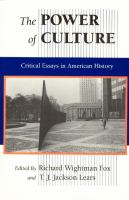Cover image for The power of culture: critical essays in American history