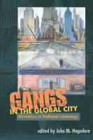 Cover image for Gangs in the global city : alternatives to traditional criminology