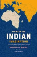 Cover image for Africa in the Indian imagination : race and the politics of postcolonial citation