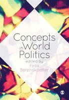 Cover image for Concepts in world politics