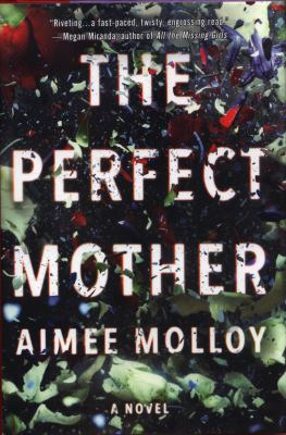 Cover image for The perfect mother : a novel