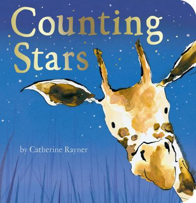 Cover image for Counting stars