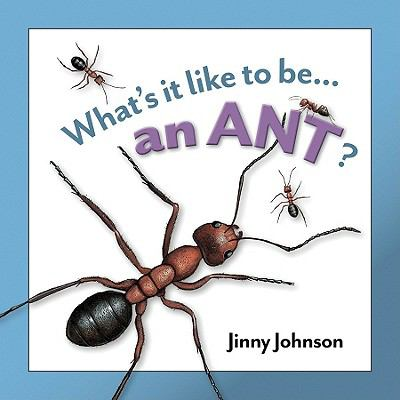 Cover image for An ant?