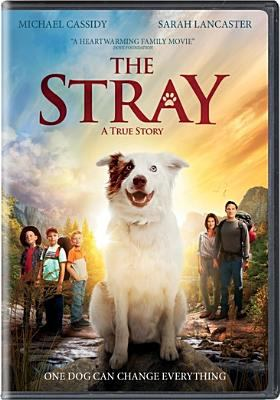 Cover image for The stray : a true story