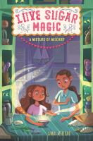 Cover image for Mixture of mischief / Anna Meriano ; illustrations by Mirelle Ortega.