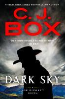 Cover image for Dark sky.
