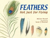 Cover image for Feathers : not just for flying / Melissa Stewart ; illustrated by Sarah S. Brannen.