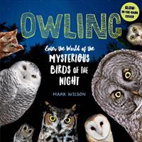 Cover image for Owling : enter the world of the mysterious birds of the night / Mark Wilson.