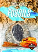 Cover image for Fossils / by Patrick Perish.