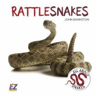 Cover image for Rattlesnakes / John Bankston.