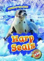 Cover image for Harp seals [Vox book] / by Rebecca Pettiford.