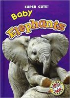Cover image for Baby elephants [Vox book] / by Christina Leaf.