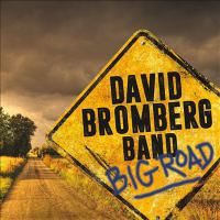 Cover image for Big road [sound recording] / David Bromberg band.