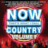 Cover image for Now that's what I call country. Volume 7 [sound recording].