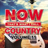 Cover image for Now that's what I call country. Volume 11 [sound recording].
