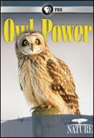 Cover image for Owl power.