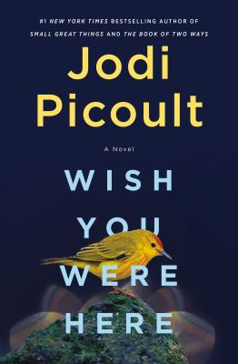 Wish-You-Were-Here---Picoult