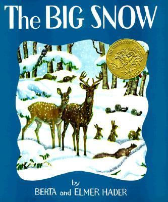 Cover image for The big snow,