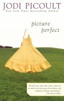Cover image for Picture perfect
