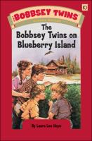 Cover image for The Bobbsey twins on Blueberry Island
