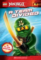 Cover image for A team divided