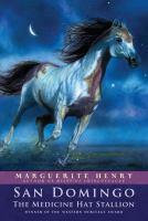 Cover image for San Domingo : the medicine hat stallion