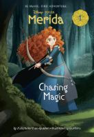 Cover image for Chasing magic