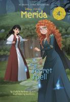 Cover image for The secret spell