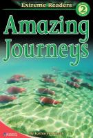 Cover image for Amazing journeys