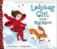 Cover image for Ladybug Girl and the big snow