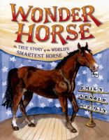 Cover image for Wonder horse