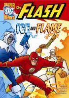 Cover image for Ice and flame