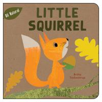 Cover image for Little squirrel