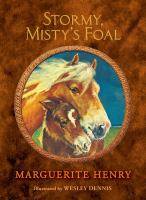 Cover image for Stormy, Misty's foal