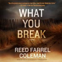Cover image for What you break [sound recording (book on CD)] : a novel