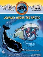 Cover image for Journey under the Arctic