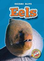 Cover image for Eels