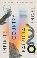 Cover image for Infinite country : a novel