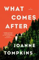 Cover image for What comes after