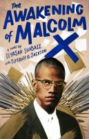 Cover image for The awakening of Malcolm X : a novel
