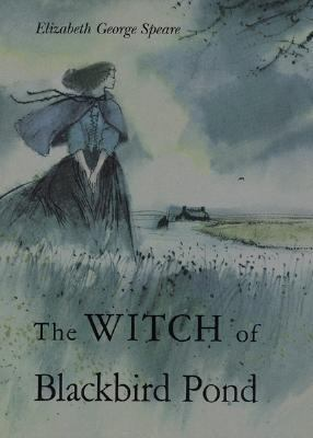 Cover image for The witch of Blackbird Pond
