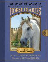 Cover image for Calvino