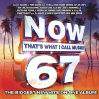 Cover image for Now that's what I call music!. 67 [sound recording (CD)].