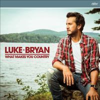 Cover image for What makes you country [sound recording (CD)]