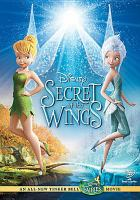 Cover image for Secret of the wings [videorecording (DVD)].