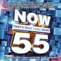 Cover image for Now that's what I call music. 55 [sound recording (CD)].